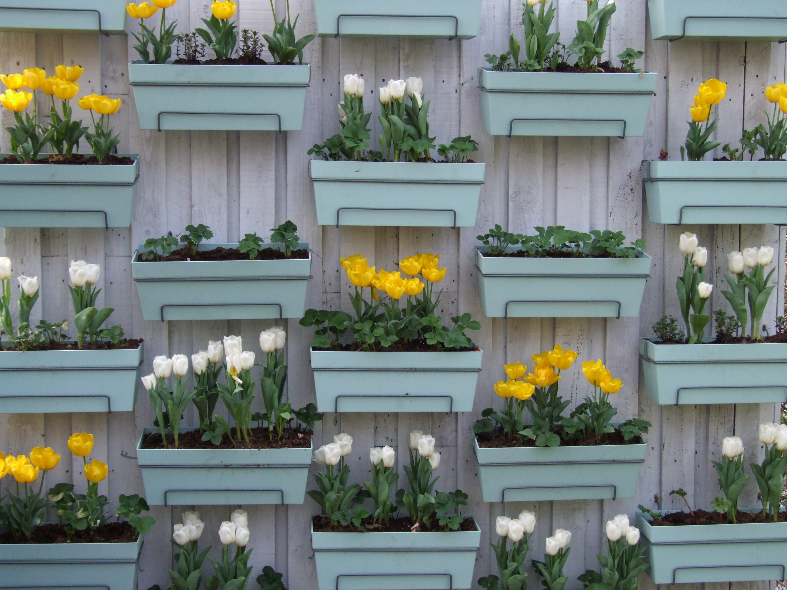 jardin vertical scaled